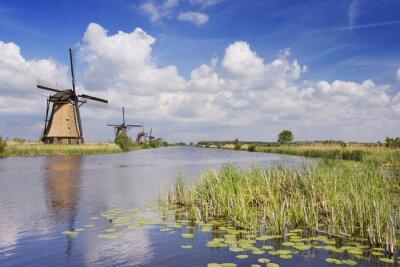 Obraz Tradycyjne holenderskie wiatraki w słoneczny dzień w Kinderdijk
