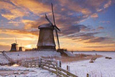 Obraz Tradycyjne holenderskie wiatraki w zimie na wschód słońca