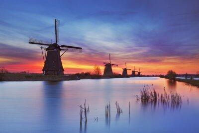 Obraz Tradycyjne wiatraki o wschodzie słońca, Kinderdijk, Holandia