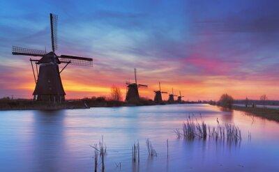 Obraz Tradycyjne wiatraki w Sunrise, Kinderdijk, Holandia