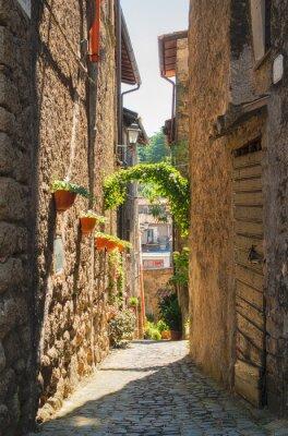 Obraz Tradycyjne włoskie domy