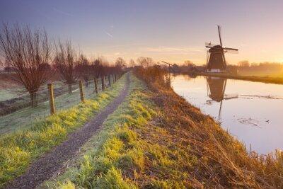 Obraz Tradycyjny holenderski wiatrak w Holandii o wschodzie słońca