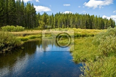 Obraz Trail Creek