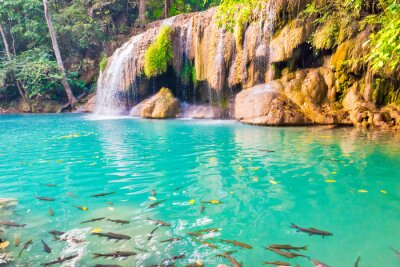 Tropical landscape with beautiful waterfall, emerald lake with fishes and green tree in wild jungle forest. Erawan National park, Kanchanaburi, Thailand