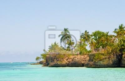 Tropikalna sceny
