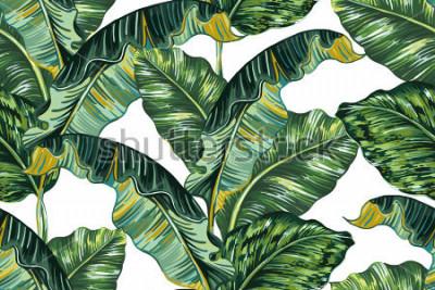 Obraz Tropikalny liści palmowych, dżungli liść bezszwowe wektor wzór kwiatowy tło