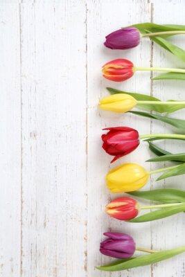 Obraz tulipany tle