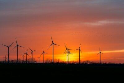 Obraz Turbiny wiatrowe w naturze z roju ptaków w zachodzie słońca