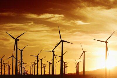 Obraz Turbrines wiatrowych o zachodzie słońca