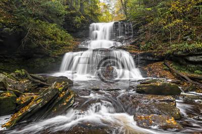 Tuscarora Falls - Ricketts Glen, Park stanowy
