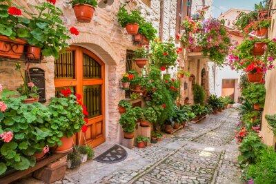 Obraz Ulica w małym miasteczku we Włoszech w okresie letnim, Umbria