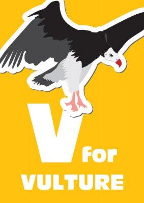 Obraz V dla Vulture, alfabet zwierząt dla dzieci
