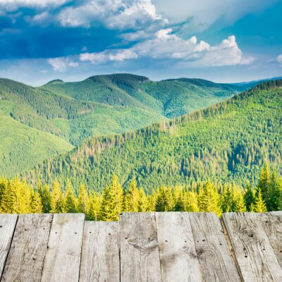 View from wooden deck to treen mountains with pine forest at sunset sun light