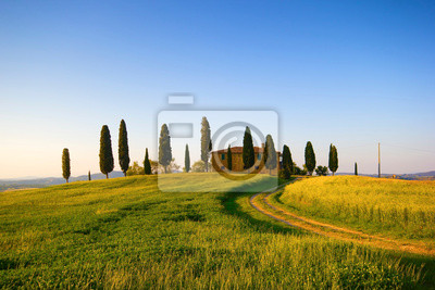 Villa Toscana con Cipressi w