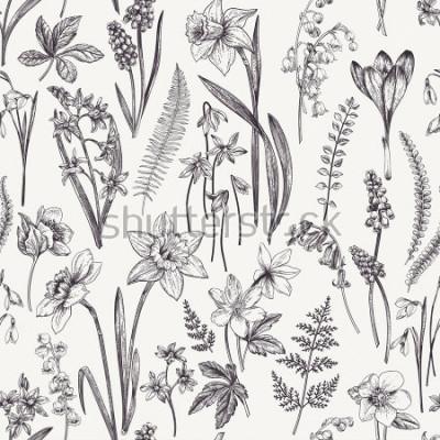 Obraz Vintage bez szwu kwiatowy wzór. Wiosenne kwiaty i zioła. Ilustracja botaniczna. Narcyz, konwalia, ciemiężyca, przebiśnieg, krokus. Rytownictwo. Czarny i biały.