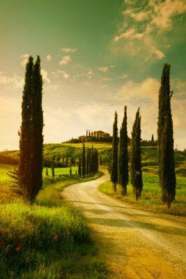 Obraz Vintage Tuscany countryside landscape