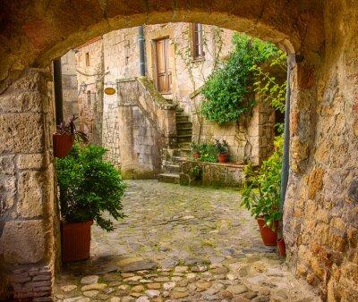 Obraz Wąska ulica średniowiecznych tuf miasta Sorano z łuku, zielone rośliny i brukowiec, tło podróży Włochy