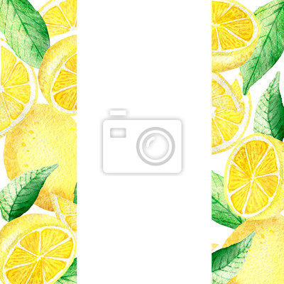 Watercolor painting banner of yellow lemons with green mint leaves isolated on white background. Watercolor hand painted illustration. Bright fruit and leaf pattern.