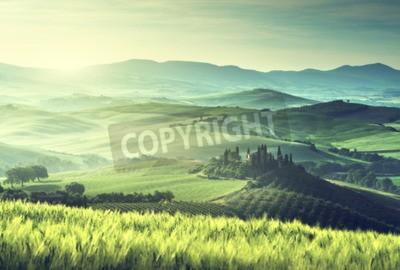 Obraz Wczesną wiosną rano w Toskanii we Włoszech