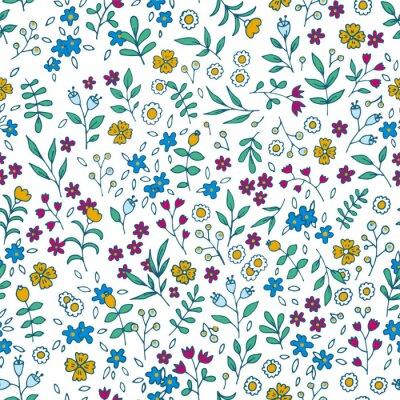 Obraz Wektor kolorowe kwiatowy szwu