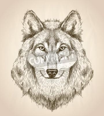 Obraz Wektor szkic ilustracja widok z przodu głowy wilka, czarny i biały wektor Dzika projektowania.