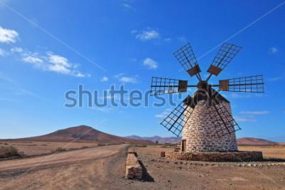 Obraz Wiatraczek na Fuerteventura, wyspy kanaryjska, Hiszpania