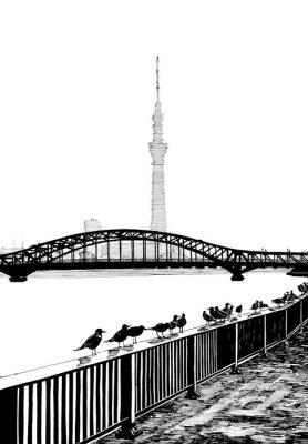 Obraz Widok mostu Sumida