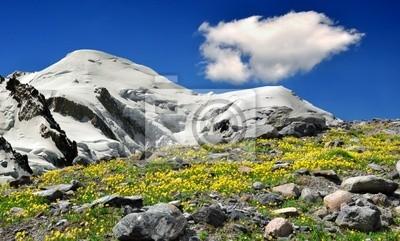 widok na góry Mont Blanc-France