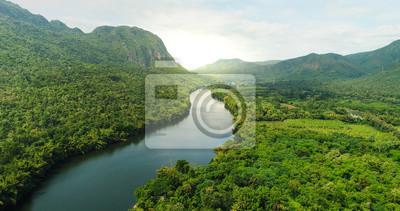 Obraz Widok z lotu ptaka rzeka w tropikalnym zielonym lesie z górami w tle
