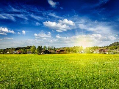 Obraz Wieś pola łąka ze słońcem i błękitnym niebem