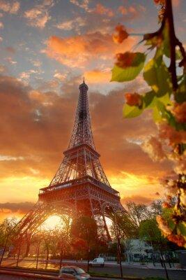Obraz Wieża Eiffla w czasie pięknej wiosenny poranek w Paryżu, Francja