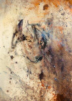 Obraz Wilk malowanie, kolor abstrakcyjny efekt w tle