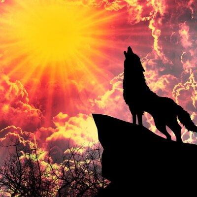 Obraz wilk w sylwetka wycie do księżyca w pełni