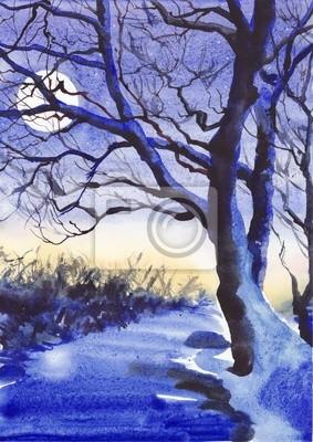 Winter moon noc