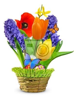 Wiosenne kwiaty w ozdobnej doniczce