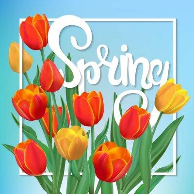 Obraz Wiosną ilustracji z tulipanów i ramki.
