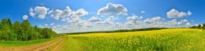 Obraz Wiosna kwiat pole