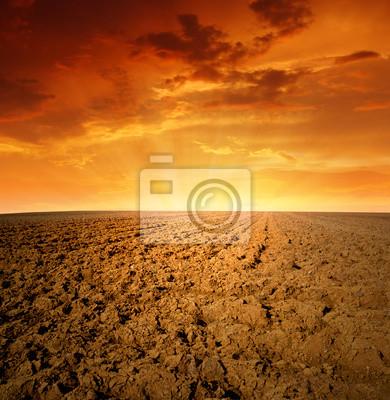 Wiosną pole w zachodzie słońca