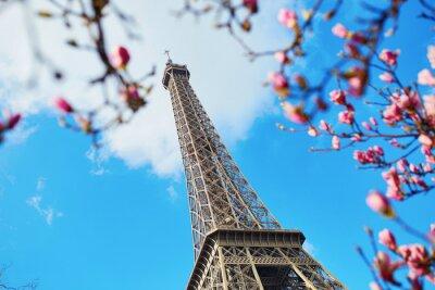 Obraz Wiosna w Paryżu