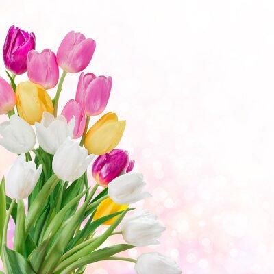 Obraz Wiosna w tle