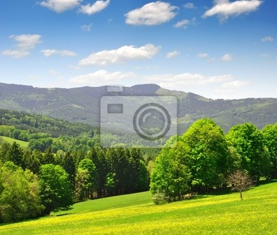 Wiosnę krajobraz w park narodowy Sumava - Czechy