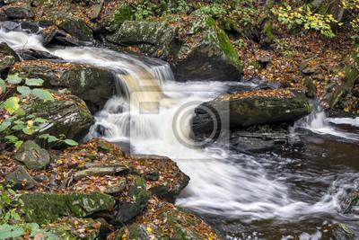 Woda w Glen - Ricketts Glen, Pennsylvania