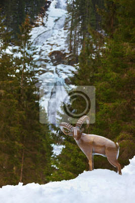 Wodospad Krimml - Tyrol Austria