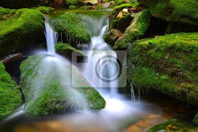 Wodospad na górskim potoku w Parku Narodowym Sumava-Czechy