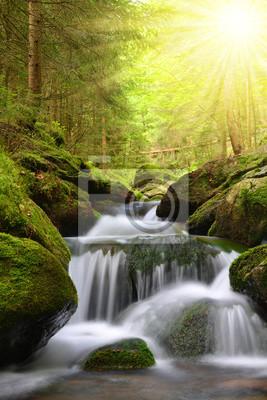 Wodospad na potoku górskim w Parku Narodowym Szumawa-Czechy