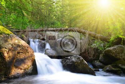 Wodospad na strumieniu w górach Wysokie Tatry, Słowacja.