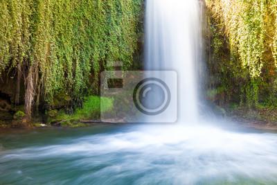 Wodospad przepływa między zielonymi liśćmi