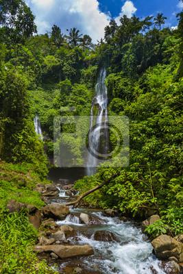 Wodospad Sekumpul - wyspa Bali Indonezja
