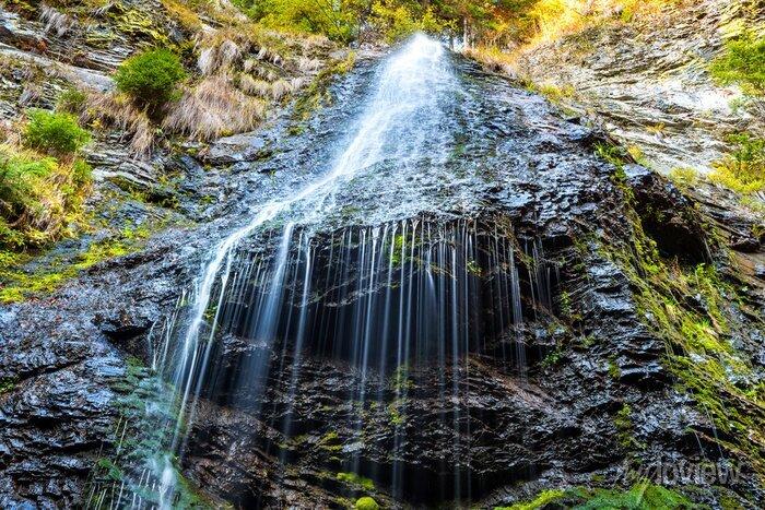 Obraz Wodospad w dzikim lesie