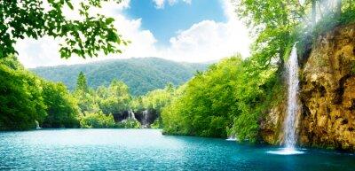 Obraz Wodospad w głębokim lesie